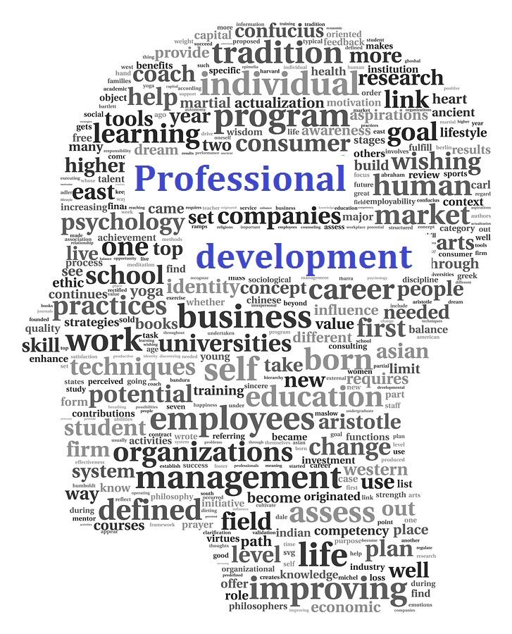 Professional development word collage